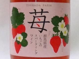 地ワイン【ストロベリーファームいかほのいちごでつくった】「群馬県産いちごのスパークリングワイン」